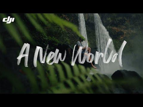 DJI FPV - A New World