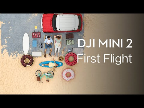 DJI Mini 2 | How to FLY DJI Mini 2