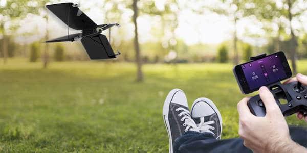 parrot-swing-flypad
